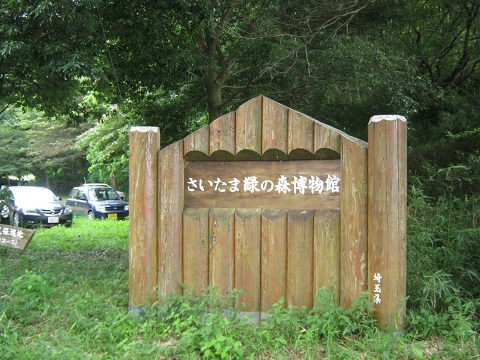 midorinomori150809-102.jpg