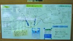 midorinomori150809-105.jpg