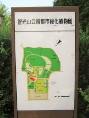 tikouzan150809-114.jpg