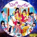 12月のカンガルー(DVD2)