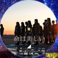 命は美しい(DVD4)