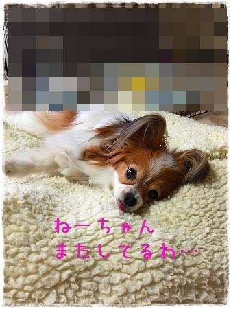 002_20150407185200804.jpg