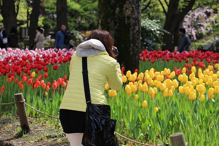 横浜公園18