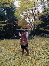 banshukiyomizudera20141111.jpg