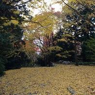 banshukiyomizudera20141112.jpg