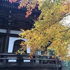 banshukiyomizudera20141115.jpg