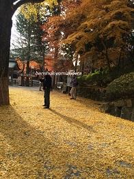 banshukiyomizudera2014114.jpg
