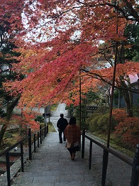 banshukiyomizudera2014117.jpg