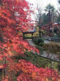 banshukiyomizudera2014118.jpg