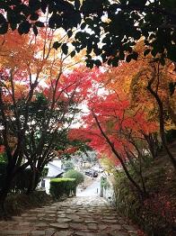 tatsuno201415.jpg
