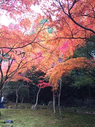 tatsuno201418.jpg
