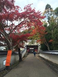 tatsuno20149.jpg