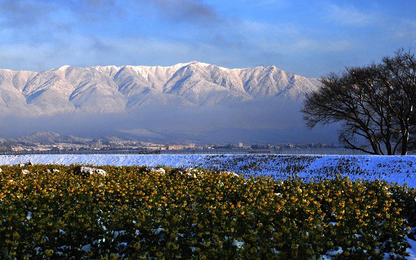 雪の比良山01