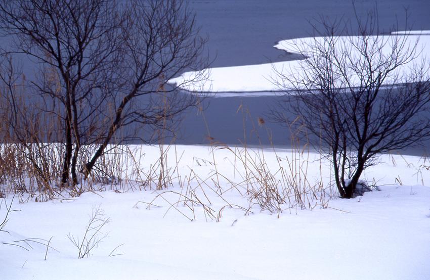 湖北冬風景03
