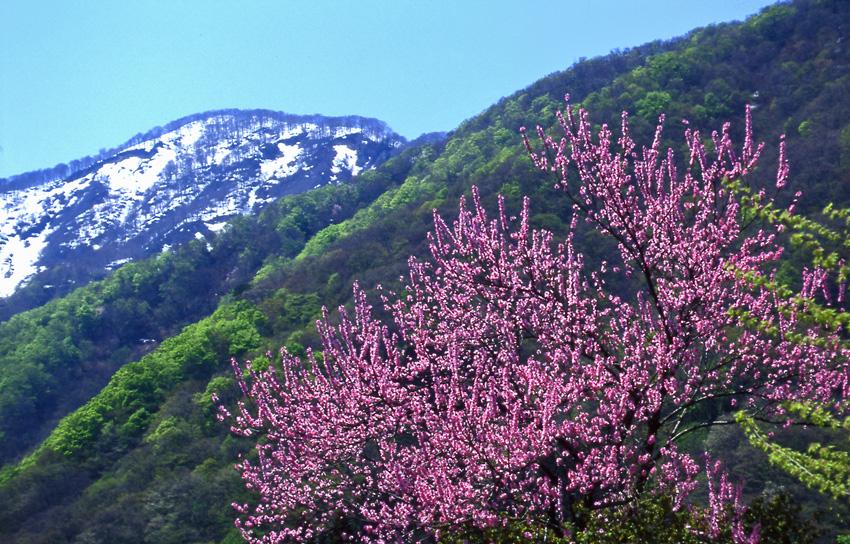 五箇山(富山)01