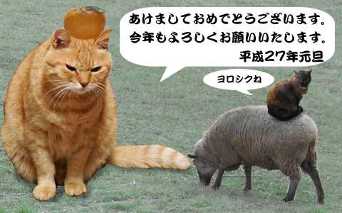 15_01_01.jpg