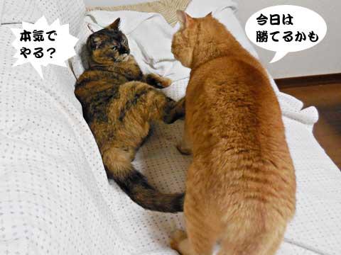15_01_16_4.jpg