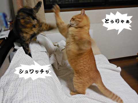 15_01_16_5.jpg