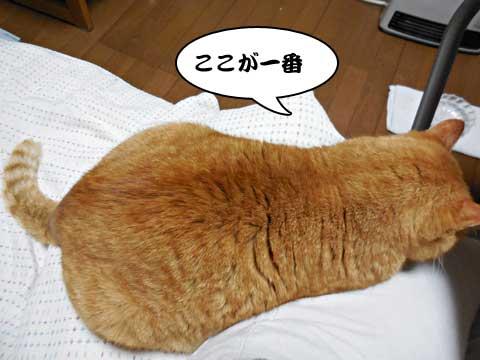 15_01_22_1.jpg
