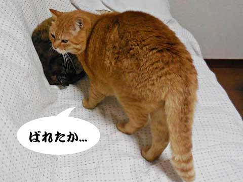 15_01_24_2.jpg