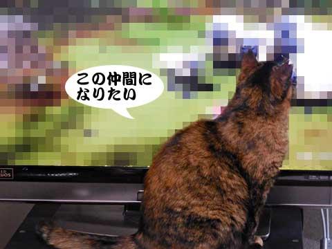 15_01_24_5.jpg