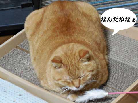 15_01_28_1.jpg
