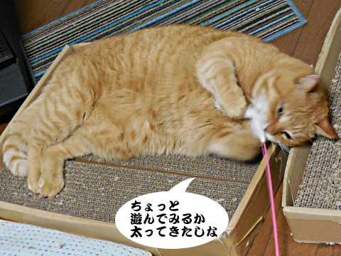 15_01_28_2.jpg