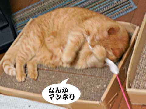 15_01_28_3.jpg