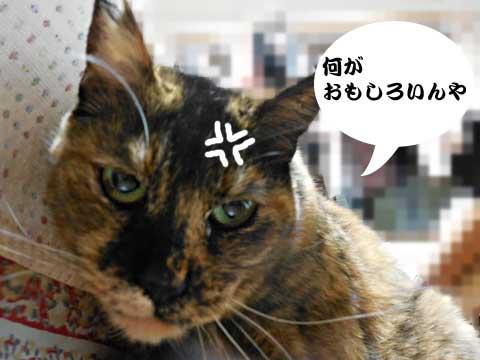15_01_30_5.jpg