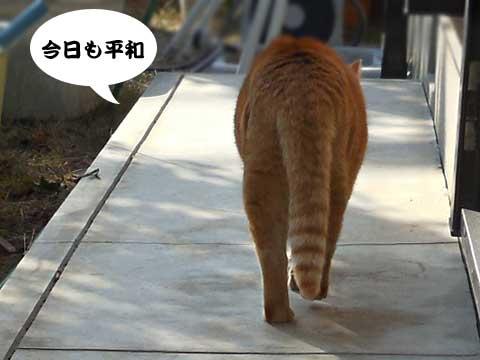 15_02_20_4.jpg