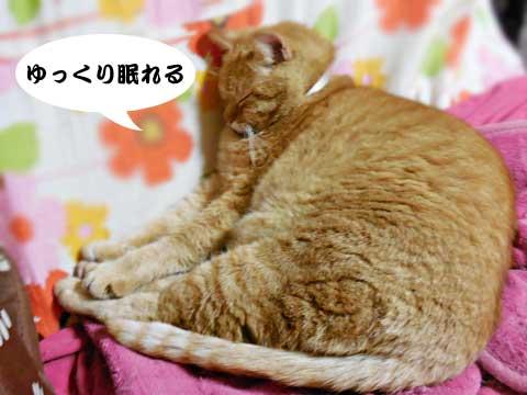 15_02_20_5.jpg