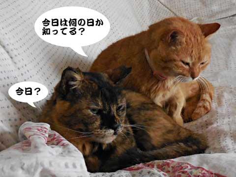 15_02_22_1.jpg