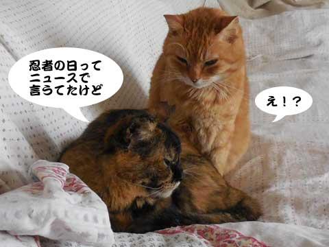 15_02_22_3.jpg