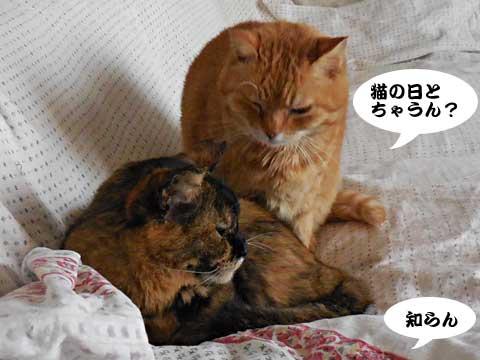 15_02_22_4.jpg