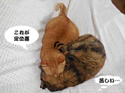 15_03_04_4.jpg