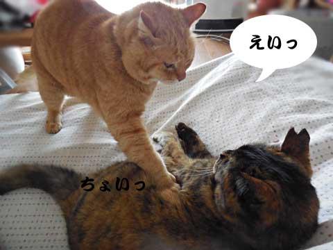 15_03_15_1.jpg