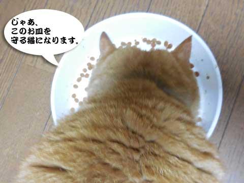 15_03_22_7.jpg