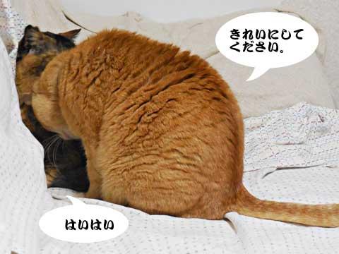 15_03_24_1.jpg