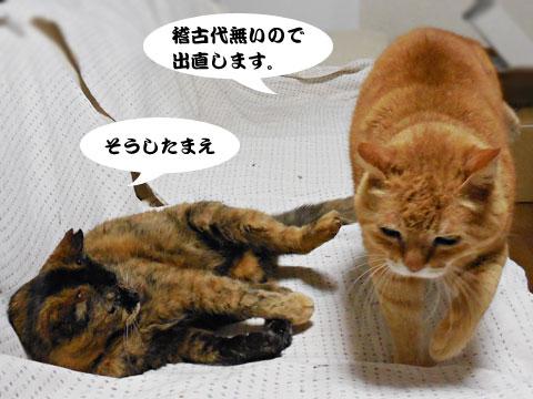 15_04_13_2.jpg