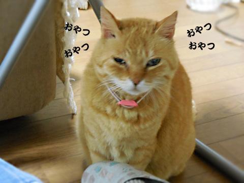 15_05_04_1.jpg