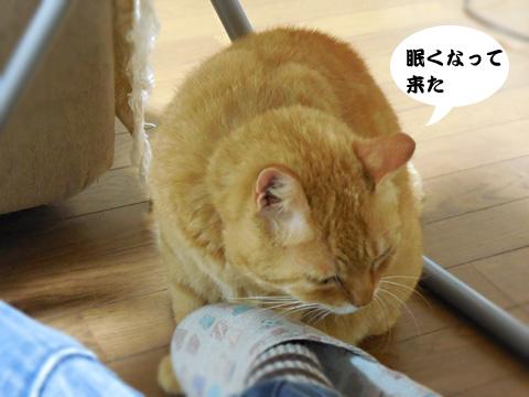 15_05_04_4.jpg