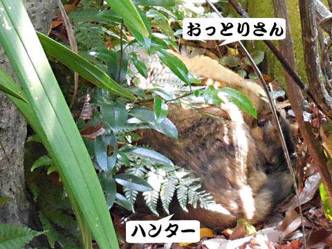 15_05_10_2.jpg