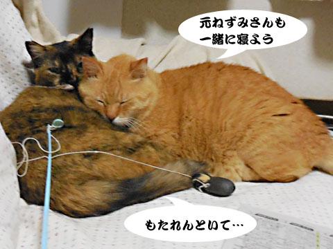 15_05_14_5.jpg