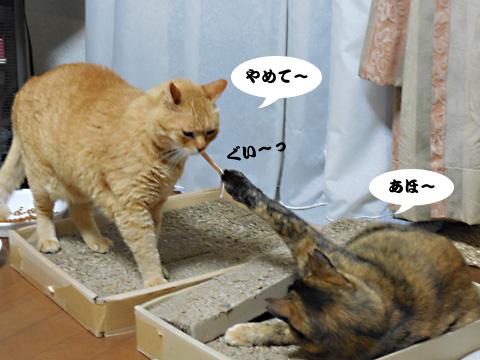 15_05_30_2.jpg