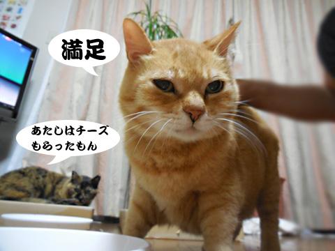 15_06_09_5.jpg