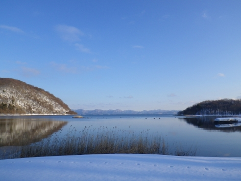 猪苗代湖モビレージ 景色
