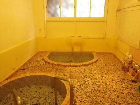 積善館 山荘の湯