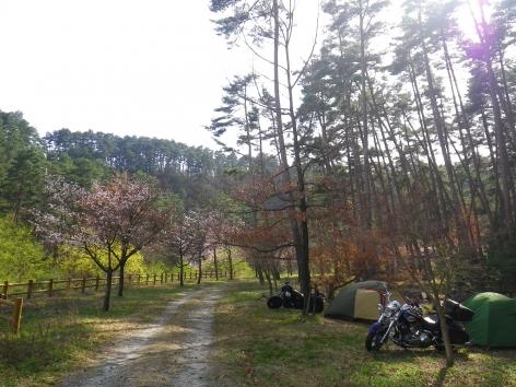 2015 御座松キャンプ場