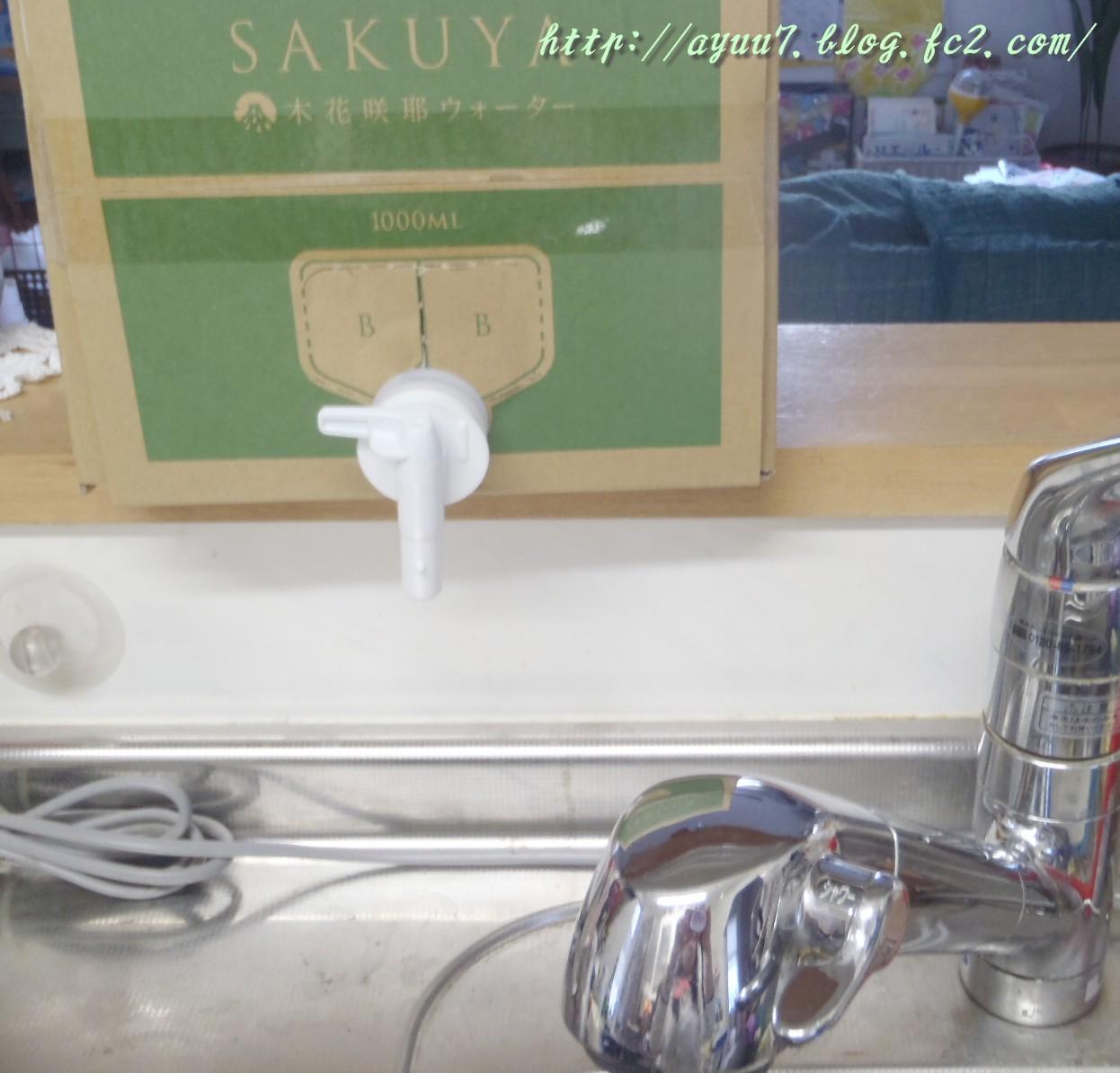 sakuya8.jpg