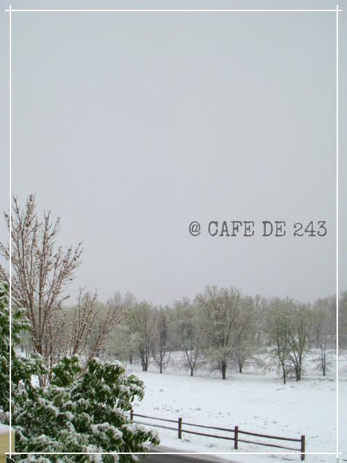 Snow_04162015.jpg